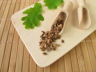 Кора дуба від нежиті: корисні властивості та застосування