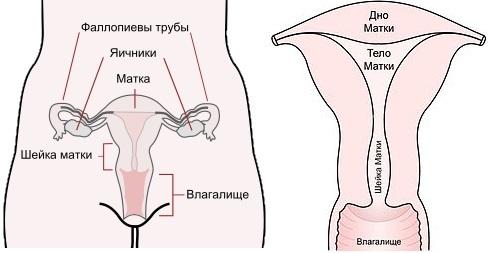 Чи потрібно лікувати ерозію шийки матки