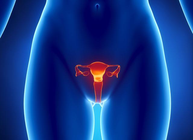 Скорочення матки після пологів