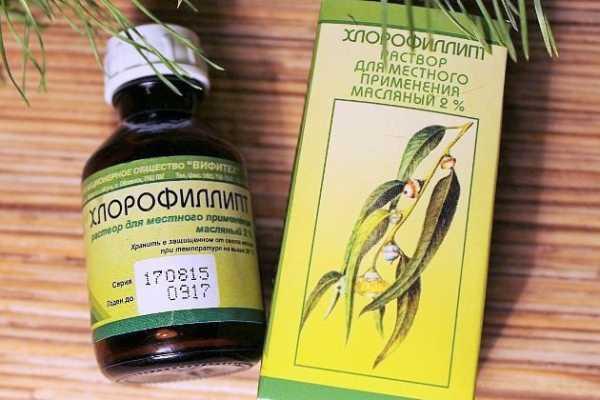 Хлорофіліпт при гаймориті і нежиті: як застосовувати і чи можна капати?